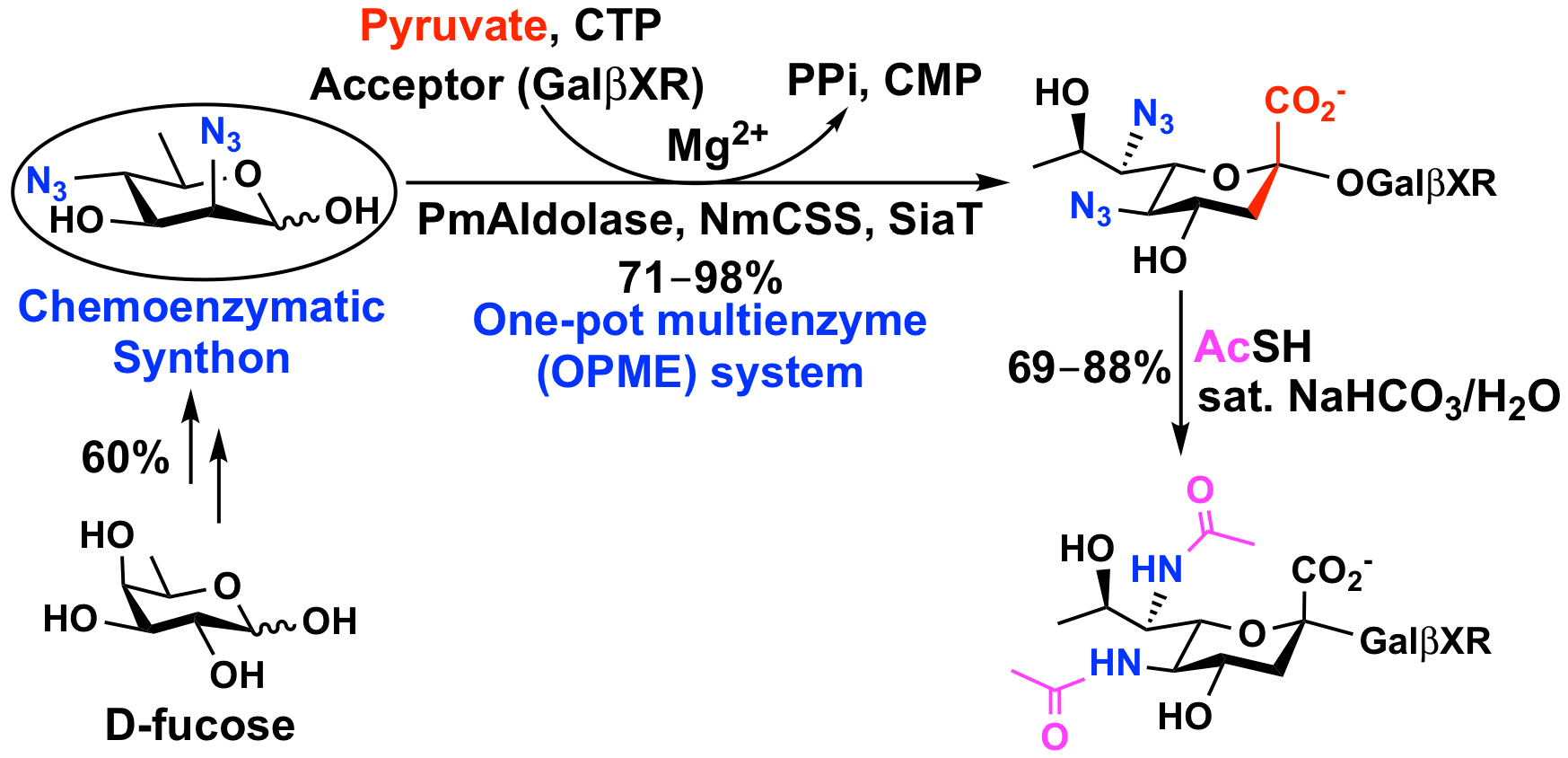 The top left shows a chemoenzymatic synthon easily accessible by chemical synthesis; it can be readily converted into complex carbohydrate analogs (bottom right) using the multi-enzyme synthetic method.